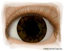 Eye Chocolate Brown