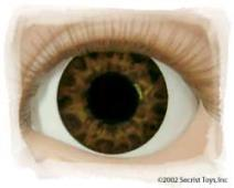 Eye Tiger Eye Brown