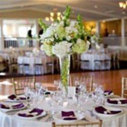 Http Www Keepyourpartygoing Com Dj Wedding Michigan Disc