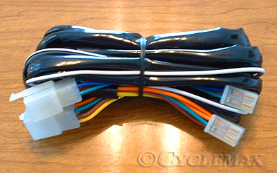 1500TrailerWireHarness_090 142T trailer wiring harness gl1500 wiring diagram at panicattacktreatment.co