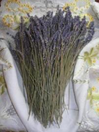 http://j.b5z.net/i/u/2111164/i/lavender_on_linen_ezr.jpg