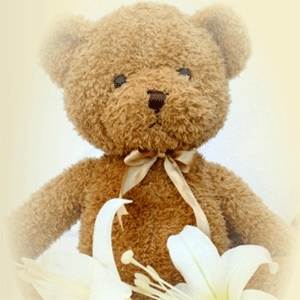 Cremation Teddy Bear Urn for Baby Memorial