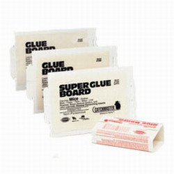 catchmaster super glue boards