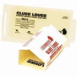 gluee louee