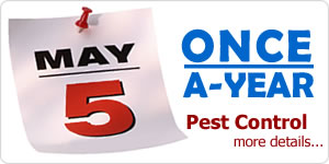 Dependable Once a Year pest control services