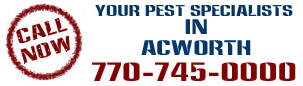 pest control acworth ga