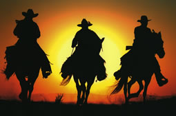 Cowboys are the folks you should avoid hiring because they put their interests above yours and are marginally skilled at best. Cowboys are a disgrace to the trade and they give a bad name to all the quality-oriented contractors out there.