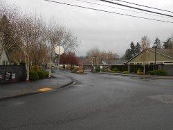 Willow Pointe Homeowners Association (Longview, Washington, March 2014)