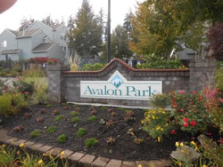 Avalon Park HOA Townhouse complex in Beaverton roof inspection and supervision projects (Oct 2013)