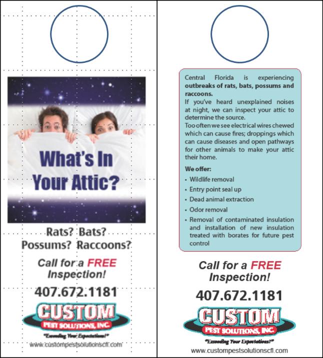 Orlando Marketing Agency - Brochures