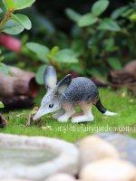 Miniature Bilby Fairy Garden