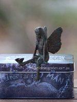 Brea The Iron Fairies