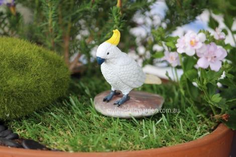 Cockatoo Miniature Fairy Garden