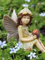 Daffodil Fairy Miniature Garden