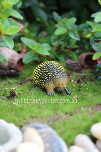 Echidna Miniature Fairy Garden