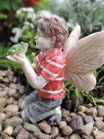 Ethan Fairy Miniature Garden