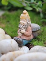 Miniature Fairy Garden Gnome