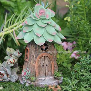 Succulent Fairy Home Miniature Garden