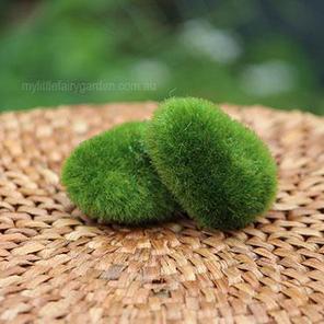 Moss Rock Fairy Garden Miniature