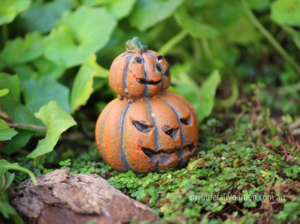 Jack O Lantern Miniature Fairy Garden