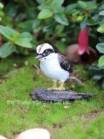 Kookaburra Miniature Fairy Garden
