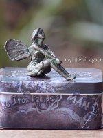 Lilly The Iron Fairies