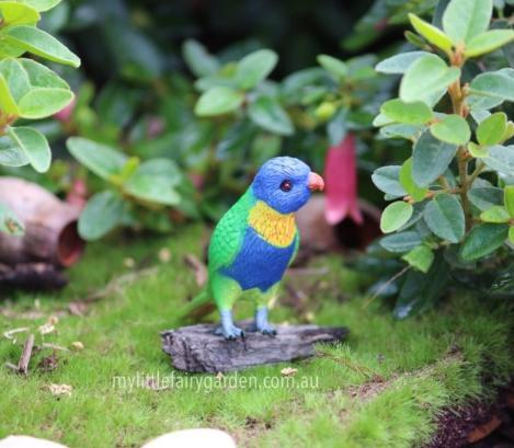 Miniature Lorikeet Fairy Garden