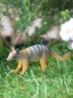Numbat Miniature Fairy Garden
