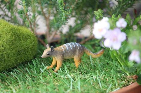 Numbat Miniature Fairy Garden