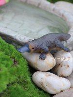 Platypus Miniature Fairy Garden