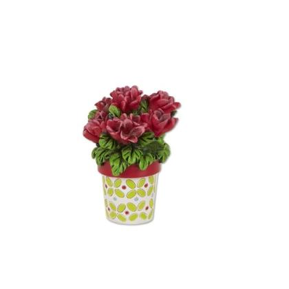 Miniature Merriment Mini Potted Geraniums