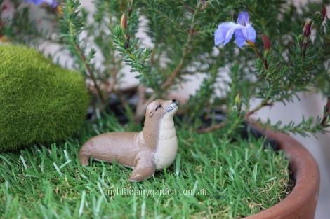 Sealion Miniature Fairy Garden