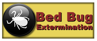 Bed Bug Extermination Cordele