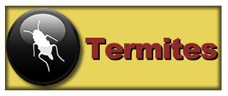 Termite Extermination Cordele ga