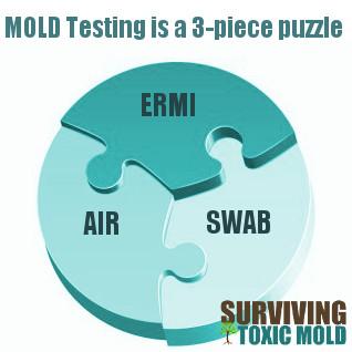 Surviving Toxic Mold | Mold Exposure | Mold Illness | Mold Testing