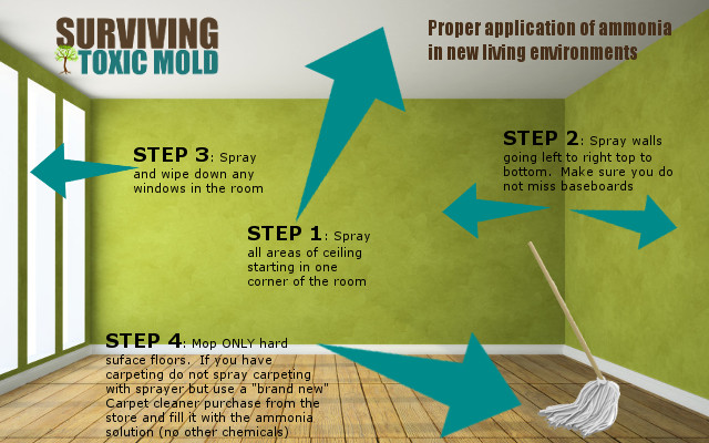 Surviving Toxic Mold | Mold Exposure | Mold Illness | Mold Testing