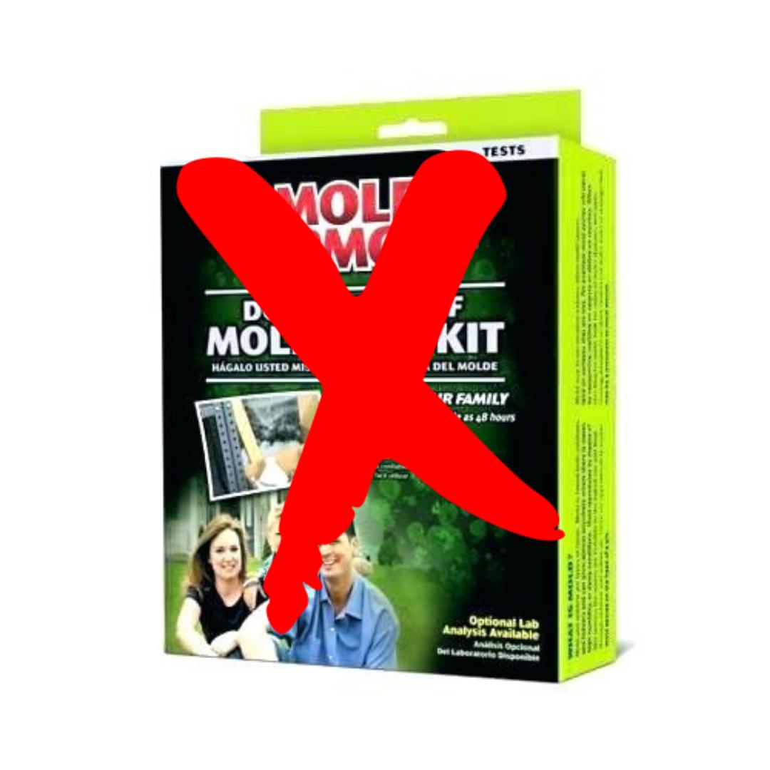 Surviving Toxic Mold | Mold Exposure | Mold Illness | Mold