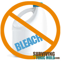 Do not use bleach to clean mold Surviving Toxic Mold