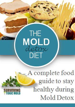 Surviving Toxic Mold Exposure Illness Testing Prevention Detox T
