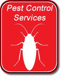 Pest Control Buford GA