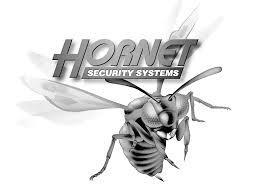 Hornet Remote Starter alarm Installation owners guides