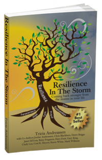Resilience In The Storm