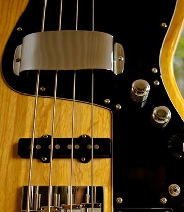 Jeff Jackson - Bass Guitar