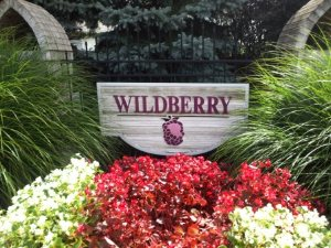 Wildberry Homes for Sale in Avon Lake Ohio