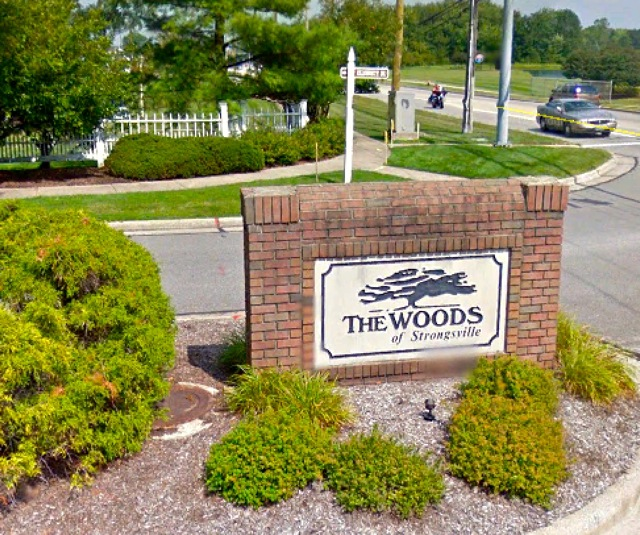 The Woods of Strongsville Homes for Sale