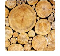 symbol: trees II