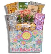 Feel Better Soon Gift Baskets Victoria-Free Shipping