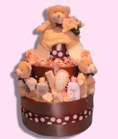 Natural Charm Girl Diaper Cake Canada