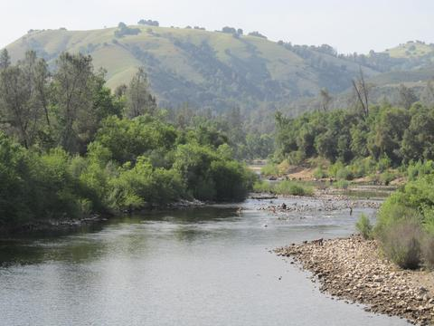 American River Gold Panning