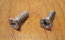 GL1800 Chrome Master Cylinder Cover Screws